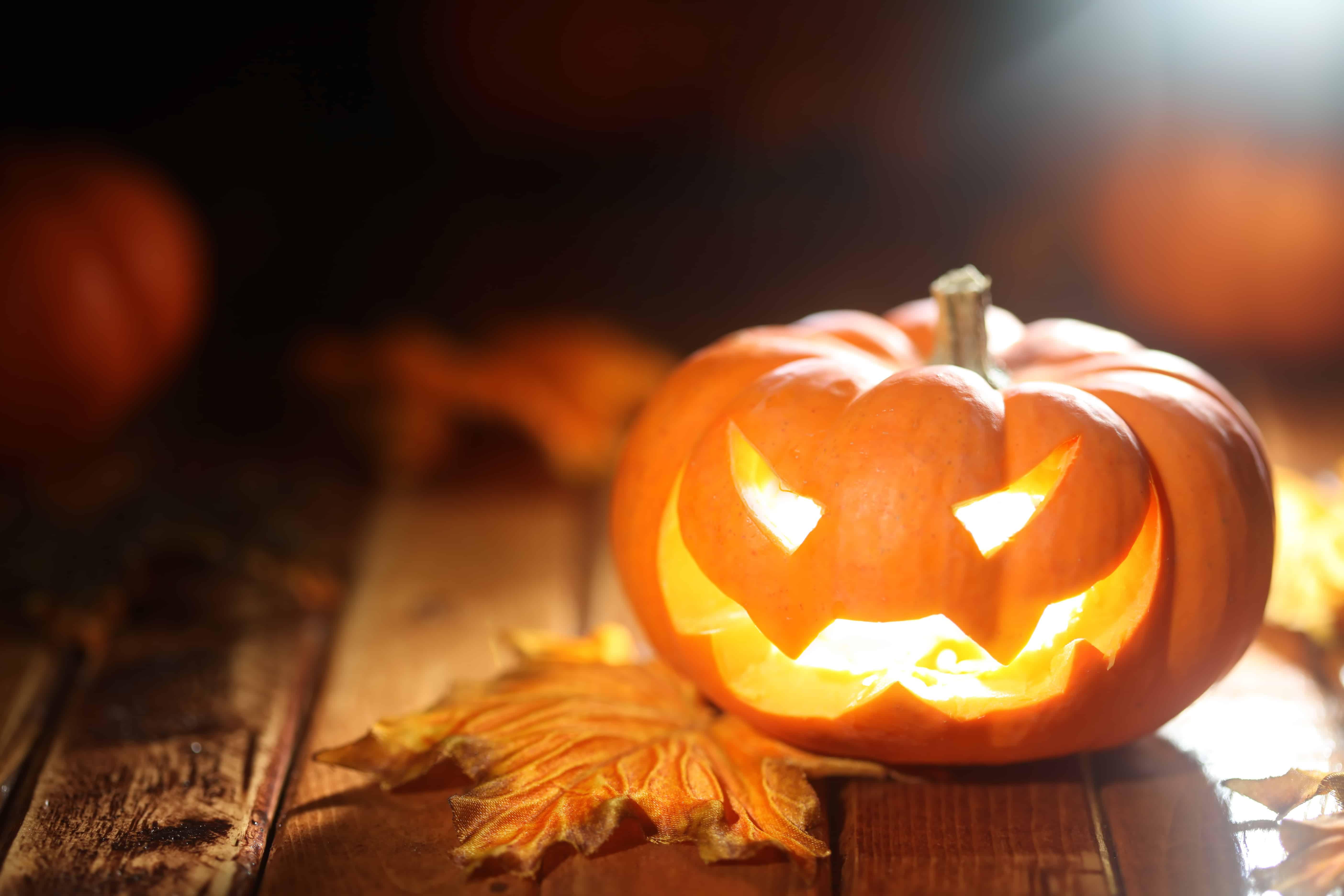 Halloween Jack O Lantern Background Homebody
