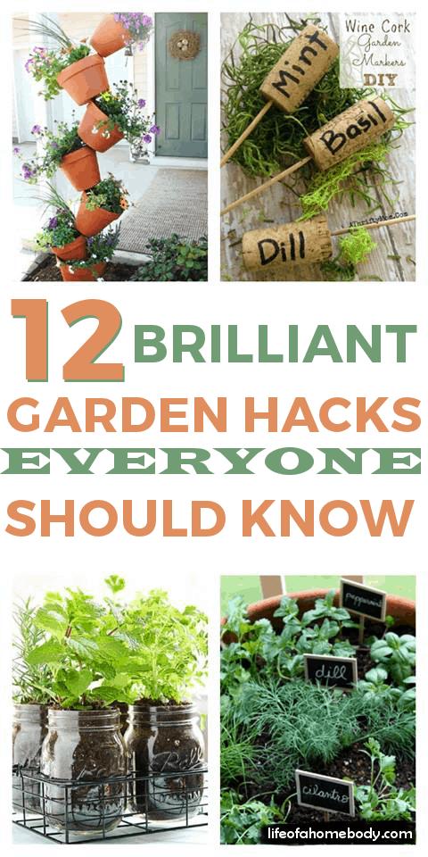 12 Brilliant Garden Hacks Everyone Should Know