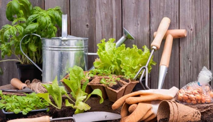 The Best Gardening Tools Ever