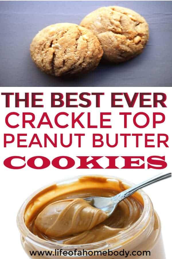 The Best, Soft, Peanut Butter Cookie Recipe that is a holiday favorite!  #peanutbuttercookies #bestpeanutbuttercookies
