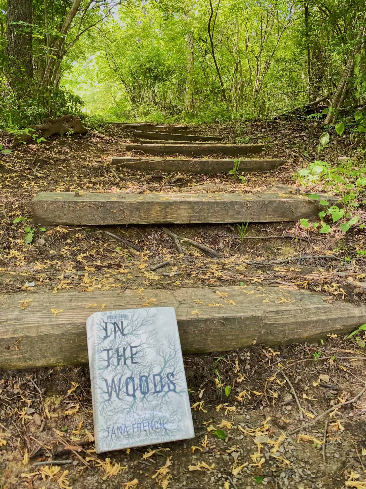 An image for a book review. Photograph of In the Woods by Tana French